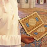 Mosche Besuch